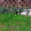 Garten2019