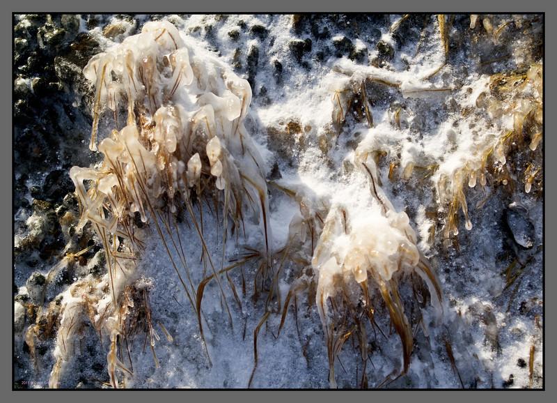 Frozen seaspray