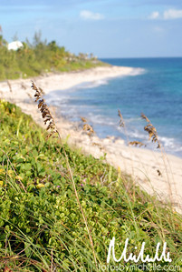 North Palmetto Point, Eleuthera
