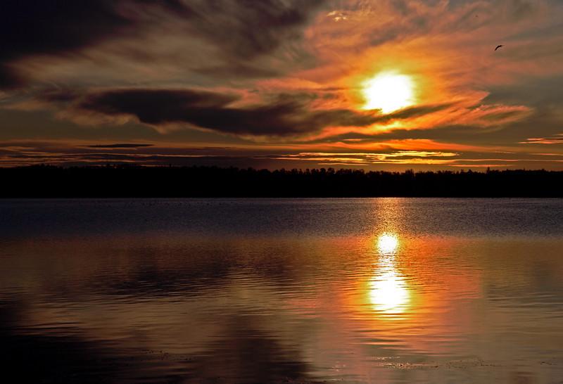 Firey Summer Sunrise - Astotin Lake, Elk Island National Park