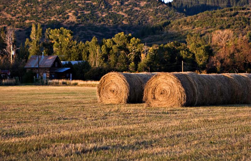 S-S Ranch Hay #2