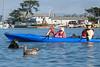 Tom-kids-otter-bird-A620-00368