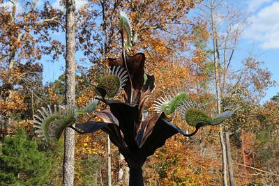 """""""Dionaea Muscipula Arboresque""""      Venus Fly Trap"""