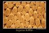 Ethiopian Bread) <br /> Recipe origin: Ethiopia