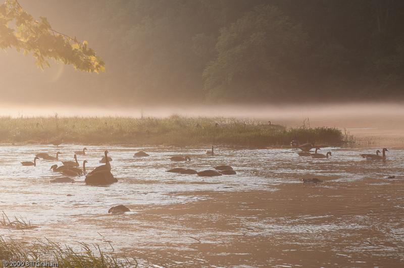 Etowah River, 2009