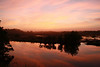 Sunrise, MarshTrail, 10,000 Islands (2)