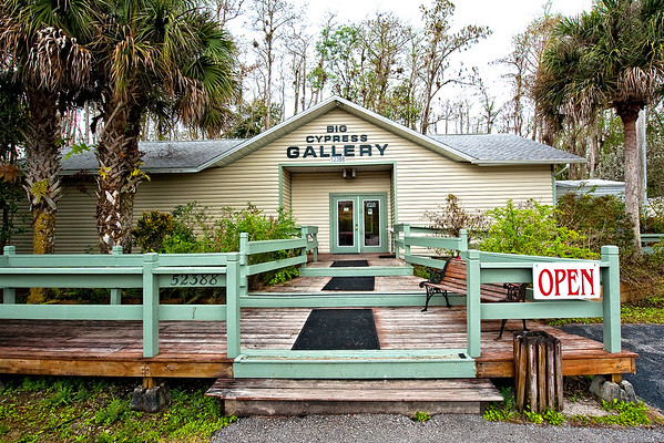 Clyde Butcher's Loose Screw Gallery, Big Cypress Swamp