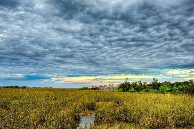 Everglades National Park, River of Grass