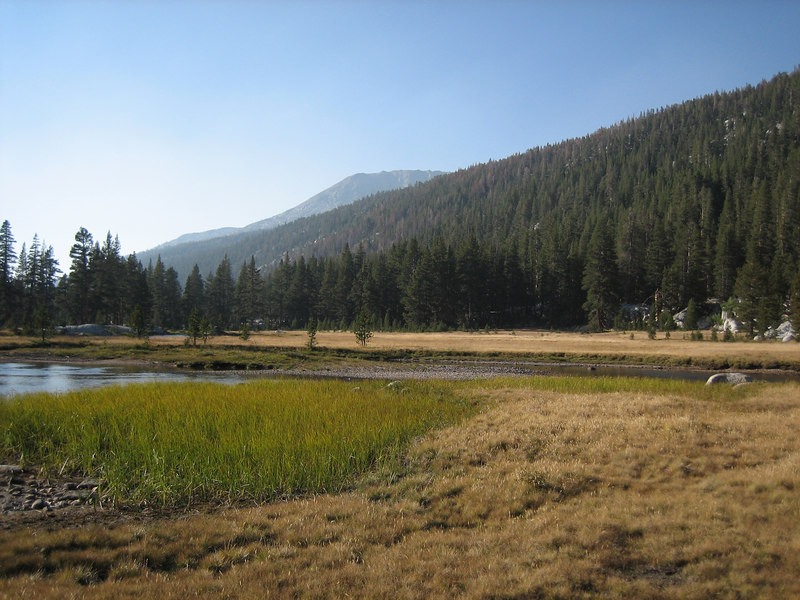 Colby Meadow
