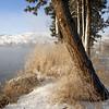 5. Winter Blues (Ewauna Lake, Klamath Falls)