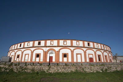 The Bullring at Trujillo, home to a large colony of breeding Lesser Kestrels.