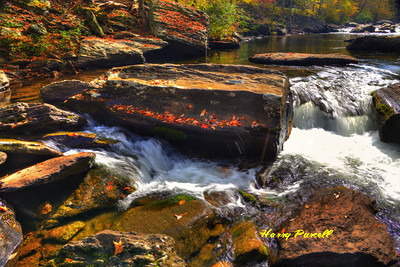 Tellico River cascades.