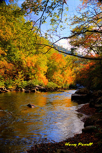 Tellico River, Cherohala Skyway, NC