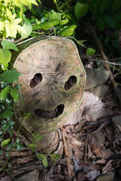 Happy Mummy Tree