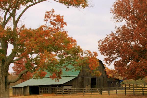Fall 2008