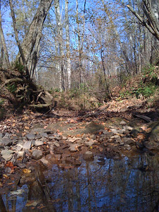 Waxhaw Creek is nearly dried up this time of year.