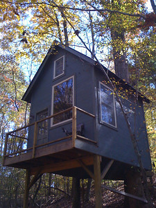 Tree House/Deer Stand