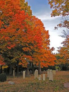 Fall, 2009