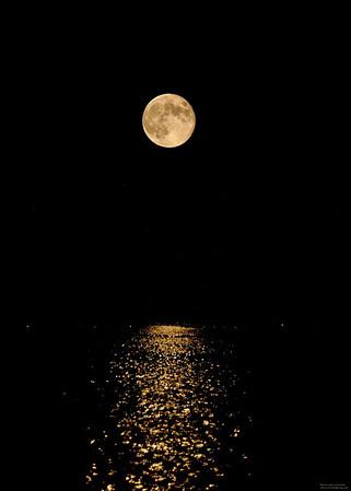 moon7 16 11