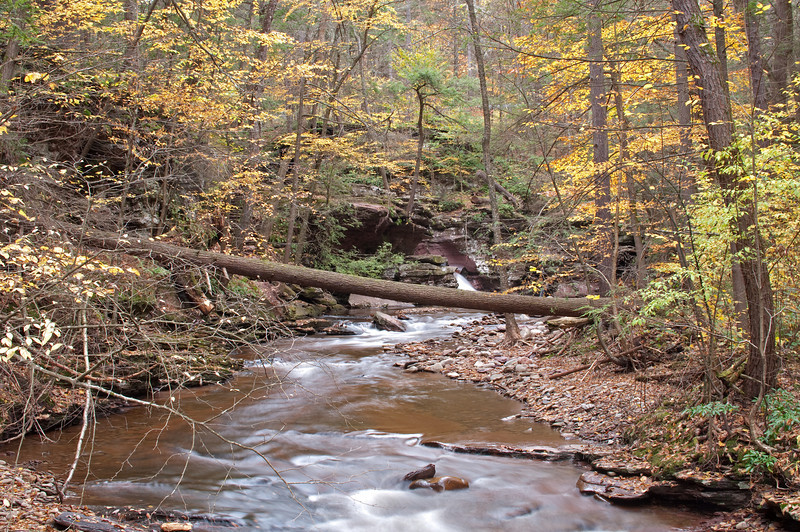 Kitchen Creek, Ricketts Glen State Park, PA