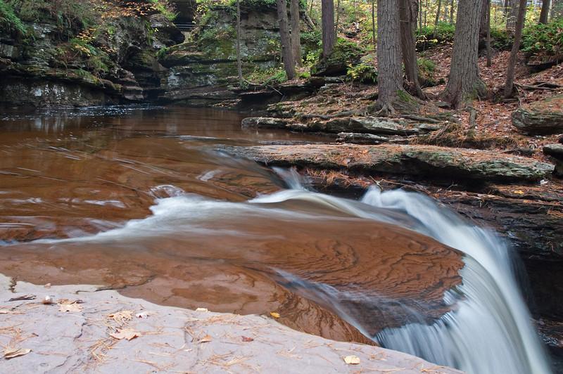Adams Fall, Ricketts Glen State Park, PA