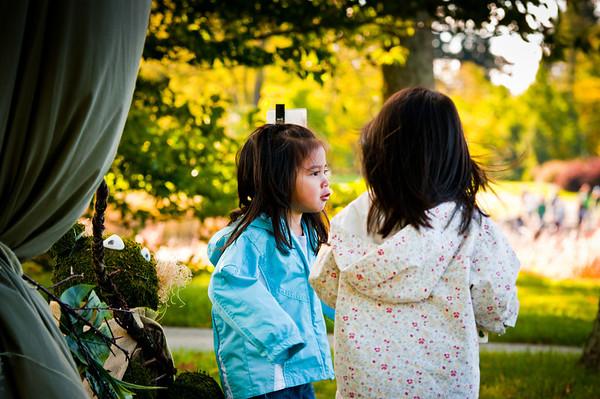 Fall at Morton Arboretum