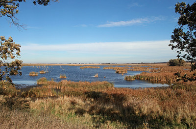Hamden Slough National Wildlife Refuge - the prairie of MN at its' finest.  Have a blessed day.  Today is 234th Birthday of the United States Marine Corps.  Semper Fi.