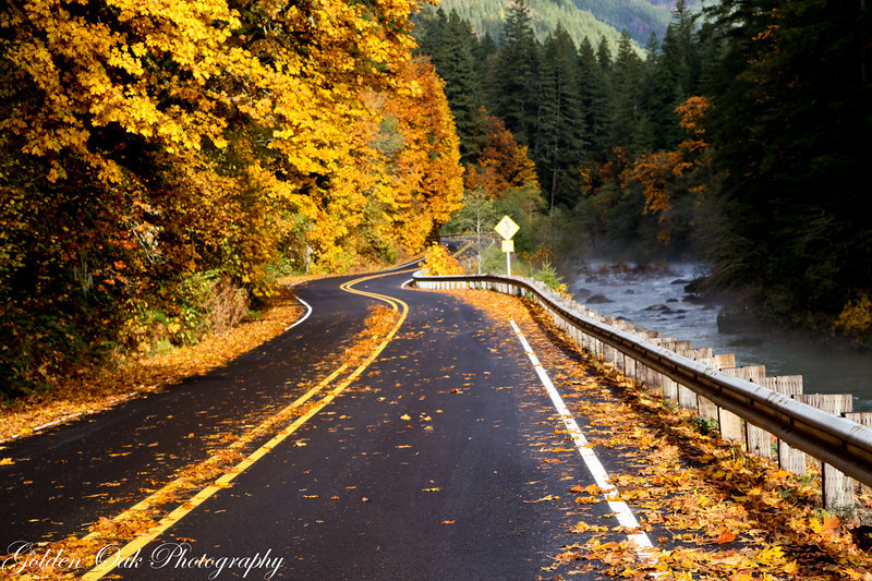 North Santiam River in Oregon Cascade Foothills..Beautiful fall colors!
