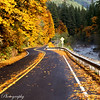 Fall Color 2012 : Shots of Fall colors from West Virginia, Oregon, Washington... Nature at it's best!