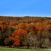 At the peak, fall in West Viriginia