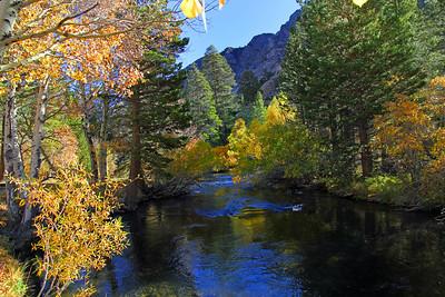 Colorful stream.