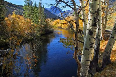 Fishing stream.