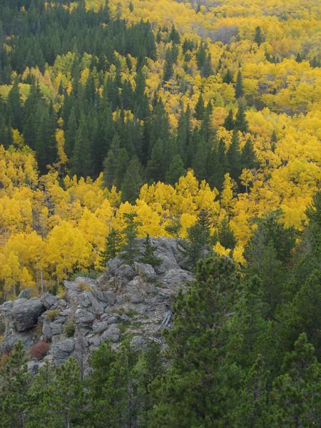 Fall colors along the Peak to Peak Highway, Colorado