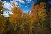 Autumn trip to Manitou Springs