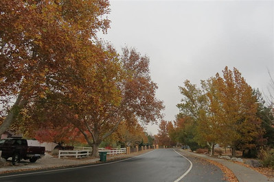 October 29, 2013 on a rainy day in south Reno