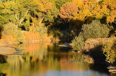 Reflections along the Carson River North of Dayton, Nevada - October 18, 2013