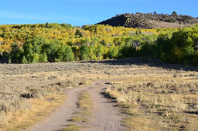 Fall Colors near Leviathan Peak