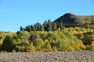 Fall Colors near Leviathan Peak - September 27, 2013