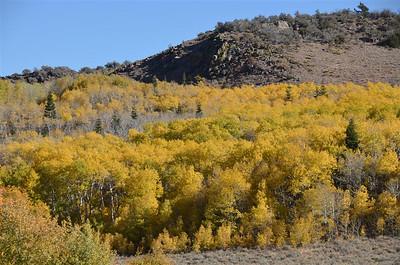 Fall Colors near Leviathan Peak - October 4, 2013