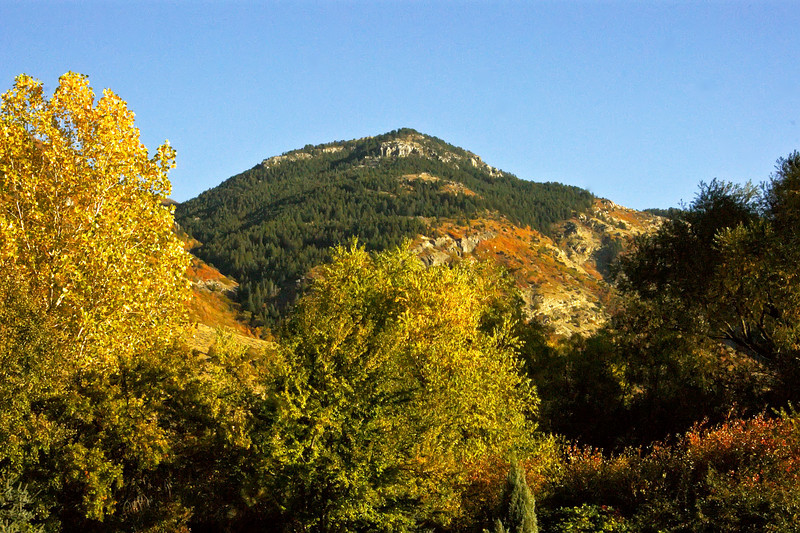 Lewis Peak, Fall color splash.