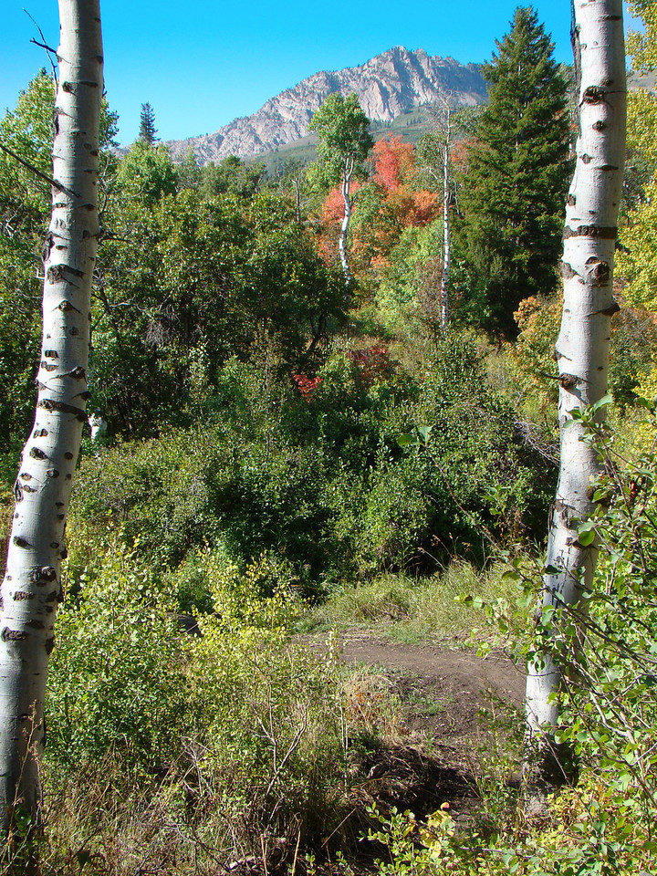 Green Pond Trail, early fall, Snow Basin