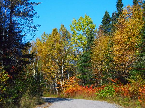 A Less Traveled Road