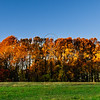 Fall at White Clay Creek, Delaware