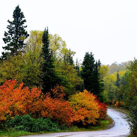 A RoadTrip Photo