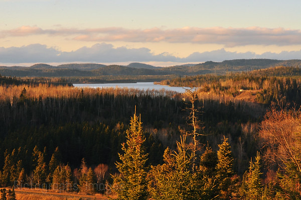 Hayes Lake, & The Boreal Forest