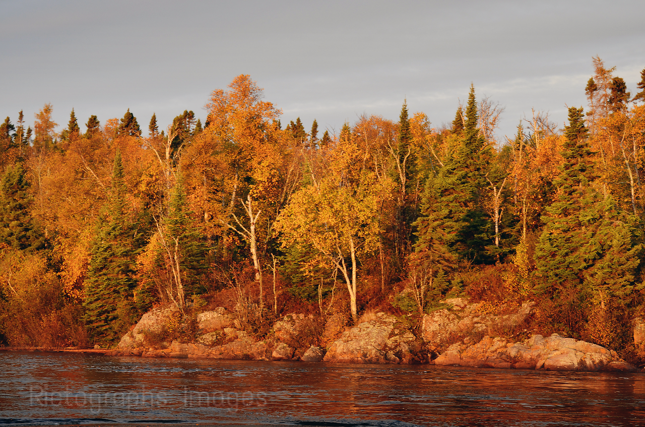 Autumn Leaves, Aguasabon River, Terrace Bay, Ontario, Canada