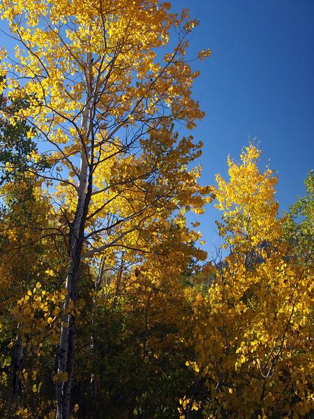 Aspen Grove, Utah