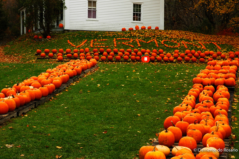 A typical Fall scene in Vermont, USA