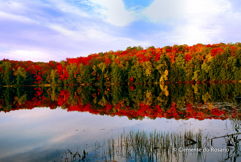Fall Colours reflection