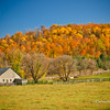 Fall colours in Hockley Valley, Ontario, Canada